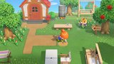 Animal Crossing New Horizons [NSW] _
